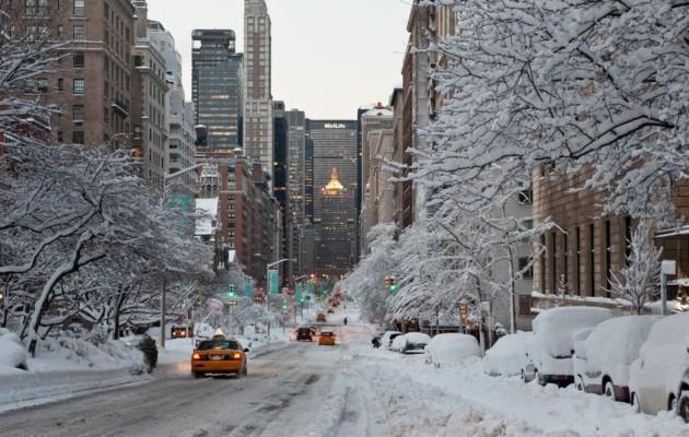 New York da euro 518