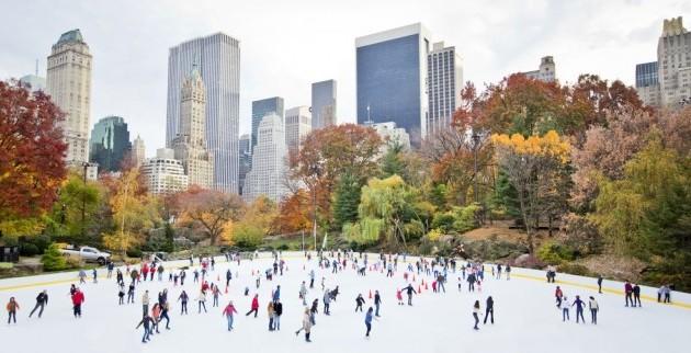 New York Natale da 1.050
