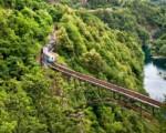 Trenino delle Centovalli da euro 59