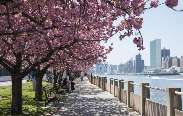 Primavera a New York a partire da € 1221