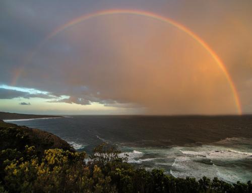 Australia e Oceano Pacifico