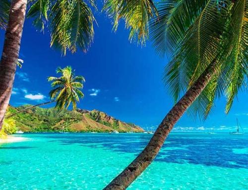 Maldive o Polinesia Francese? Quale scegliere?